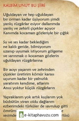 Ahmet Telli - Kalbim Unut Bu Şiiri