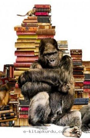 Bilimsel Yöntem - 3 Evrim Teorisi Sadece Bir Teorimi Evrim Çürütülebilir Mi