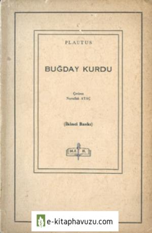 Plautus - Buğday Kurdu