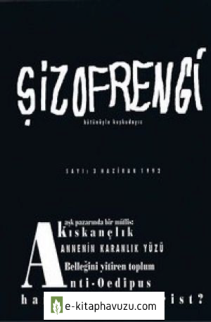 Şizofrengi 3