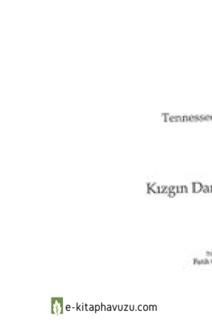 Tennessee Williams - Kizgin Damdaki Kedi